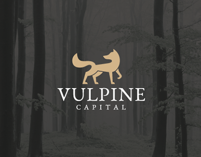 Vulpine Capital Branding & Web Design