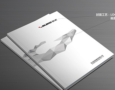 Wolong Picture Brochure