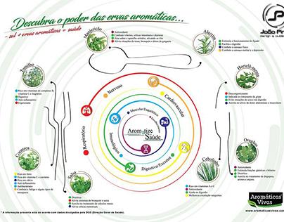 Infografia - Aromatize a sua saúde