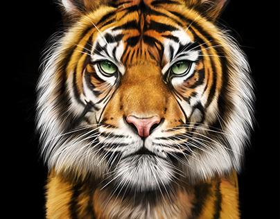 Procreate Painting Tiger