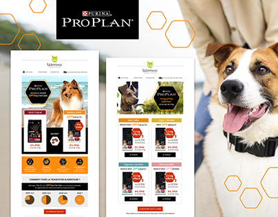 Proplan newsletters