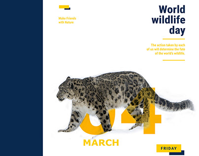 Snow Leopard Foundation Collateral