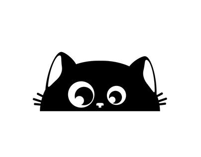 Black kitty hiding