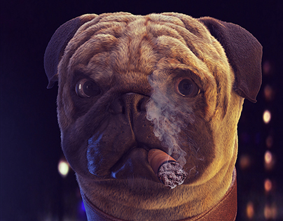 Pug (3d)