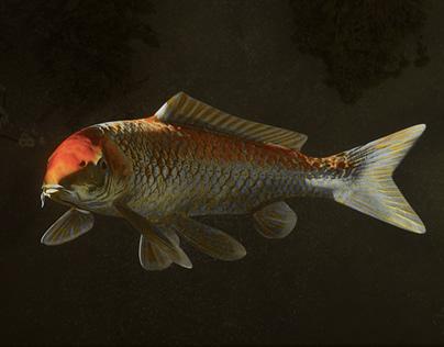 Koi Fish vol.1