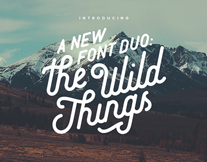 The Wild Things Typeface