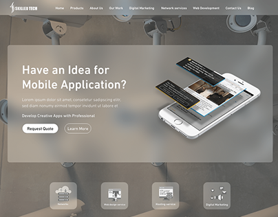 Development Co. website UI