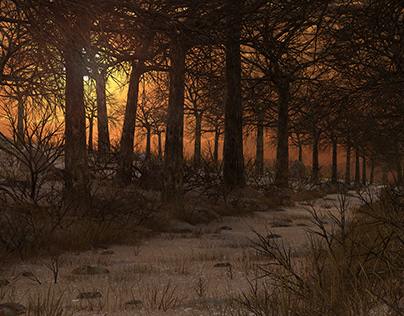 Sunset Forest 3d environment