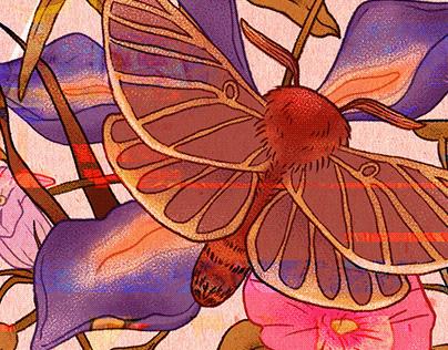 Blooming   Botanical textile design