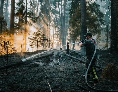 Wildfire in North Estonia