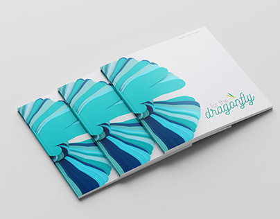 For the Dragonfly: Design Brief