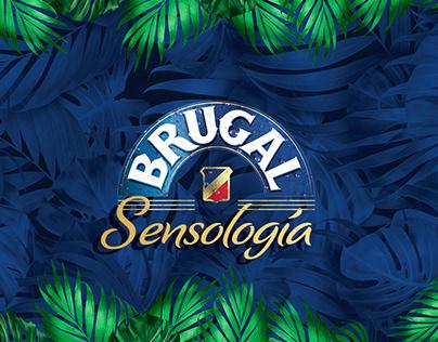 Brugal Sensología 3D Branding