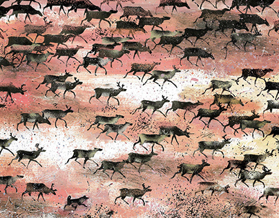 Lots and lots of deer