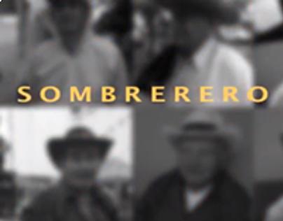 El Sombrerero, Teoría VIVIENDA, 2013-2