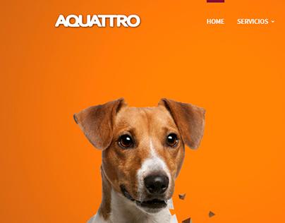 Aquattro WebSite