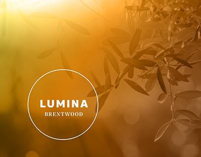 Lumina, Real Estate Masterplan Development