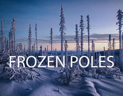 Frozen Poles