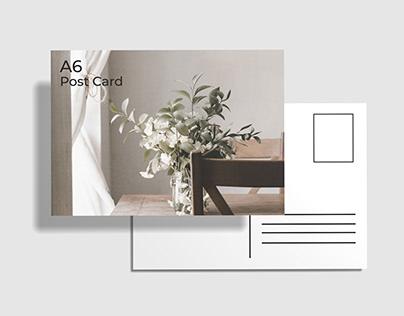 Free A6 Post Card Mockup