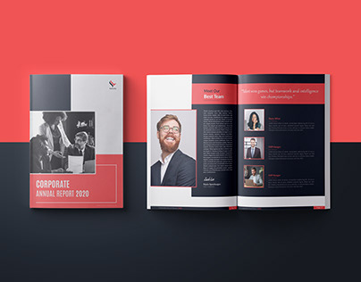 """CORPORATE ANNUAL REPORT- """"FALCONFLY"""""""