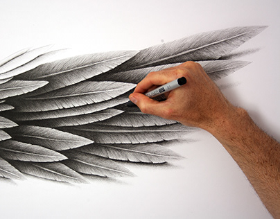 Giant Feathered Wing