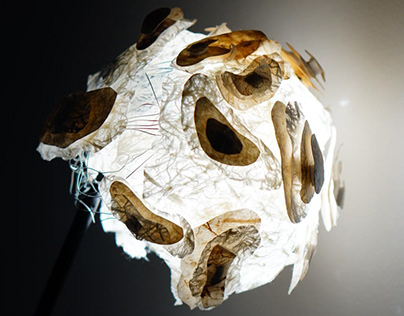Mussel Bed Lamp