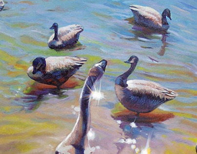 Color and Geese