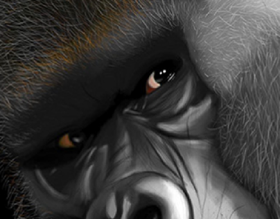 Illustration Gorille
