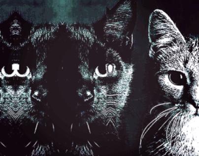 CAT AS IMAGE MACRO