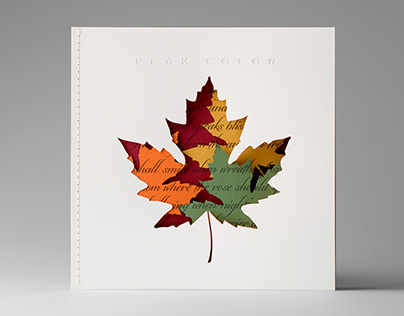 Custom Die-cut Seasonal Promotion