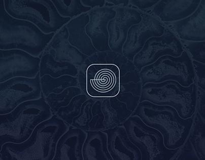 Seashells Identifier App | UI Design