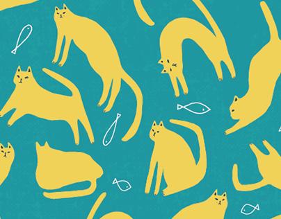 kitty paradise
