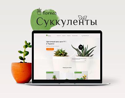 Succulents | Landing page