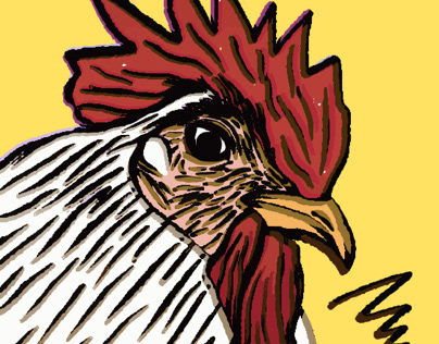 Cute Chicken-萌鸡