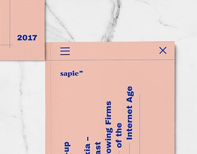 Sapie | Annual Report 2017