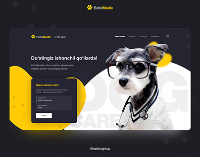 BobikMedic - Website header design