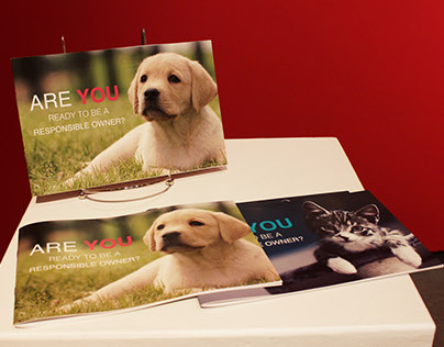 Fur-ever Family booklets Capstone project