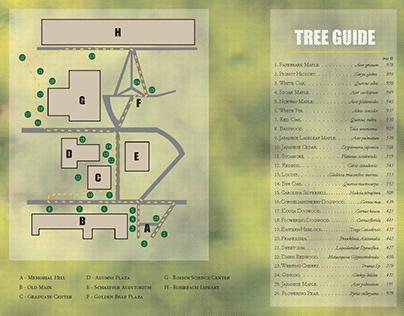 Kutztown Tree Walk Brochure