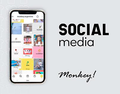 Instagram Feed - Monkey