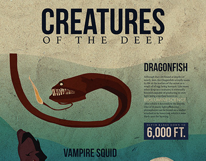 Creatures of the Deep Infographic