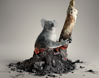 WWF - Australia