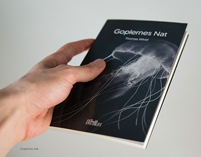 book covers for DreamLitt - Goplernes Nat & Exilium