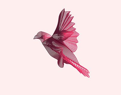 Bird Vector Design - Adobe Illustrator