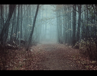 Le temps du paysage (vidéo)