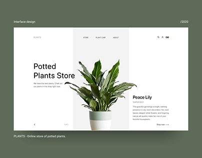 Online store of potted plants.