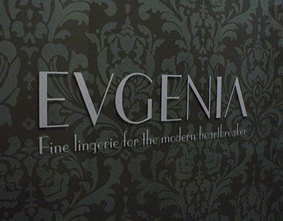 EVGENIA Window Installation