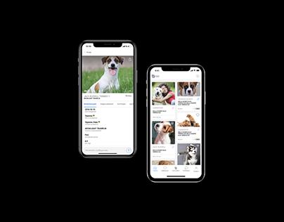 Breeder. Platform for dog owners