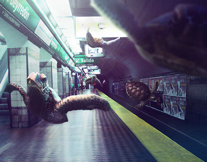SUBWAY TURTLES - PERSONAL
