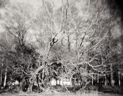 Holga adventures - Part 1