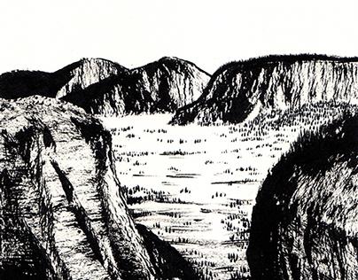 Landscapes in Ink