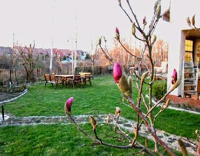Ogrod Magnoliowy